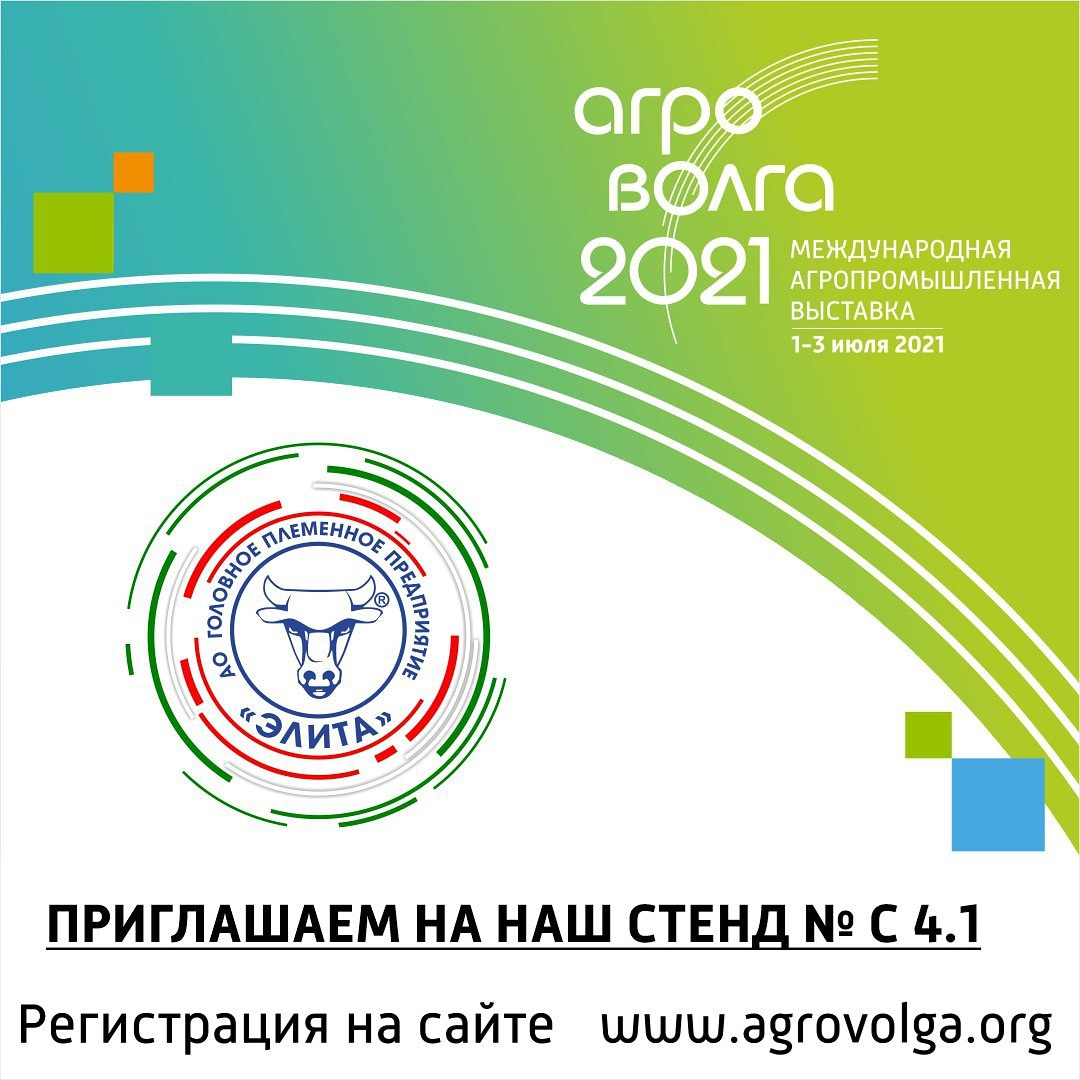 We invite you to the exhibition